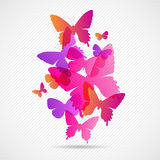 Vector butterflies background design. Collorfull Royalty Free Stock Images