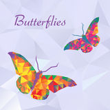 Vector butterflies. Color couple geometric. Abstract insect. Polygonal design eps10 Stock Photo