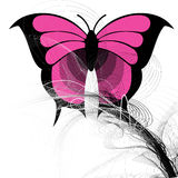 Vector butterfly. Abstract  butterfly illustration design Royalty Free Stock Photo