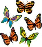 Vector butterfly. Five different vector butterflys Royalty Free Stock Image
