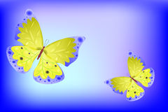 Vector butterfly as abstract background Stock Photography