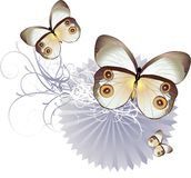 A Vector Butterfly Background Stock Photography