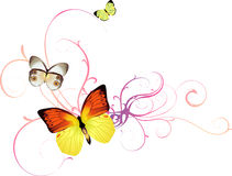 A Vector Butterfly Background Royalty Free Stock Photos