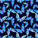 Vector butterfly background vector illustration