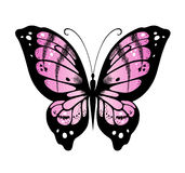 Vector butterfly Stock Photography