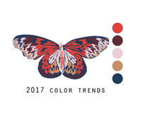 Vector butterfly with colors of 2017. Butterfly in 2017 fall colors Stock Images