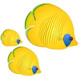 Vector butterfly fish. Royalty Free Stock Photos