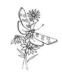 Vector Butterfly and Flower Stock Photography