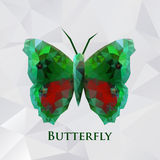 Vector butterfly green geometric. Abstract insect. Polygonal design eps10 Royalty Free Stock Photography
