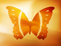 Vector butterfly illustration Stock Photos