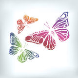 Vector butterfly insect art white decorative Stock Photo