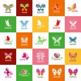 Vector butterfly logo Stock Photo