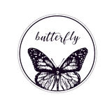 Vector butterfly logo Royalty Free Stock Photo