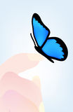 Vector butterfly sitting on hand Stock Photos