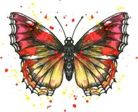 Vector butterfly in watercolor Stock Image