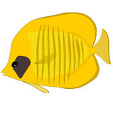 Vector Butterfly yellow Fish Royalty Free Stock Image