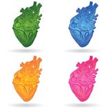 Vector button or icon of a human heart Royalty Free Stock Photo