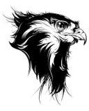 Vector a cabeça do falcão, do falcão ou da águia Foto de Stock