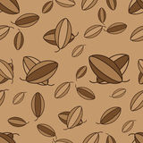 Vector cacao seamless Stock Image