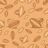Vector cacao seamless Royalty Free Stock Image