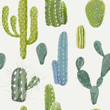 Vector Cactus Background. Seamless Pattern. Exotic Plant. Tropical Background Stock Image