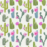 Vector Cactus Background. Seamless Pattern. Exotic Plant Royalty Free Stock Photos