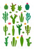 Vector cactus icons. With flowers. Different types of cactus plants Royalty Free Stock Photos