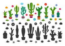 Vector cactus icons. Vector home cactus icons. Different types of cactus plants in flowerpots with flowers and grass icons Royalty Free Stock Photos