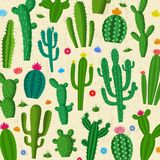 Vector cactus pattern. Different types of cactus plants icons royalty free illustration