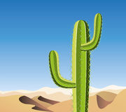 Vector cactus in sandy desert Stock Photo