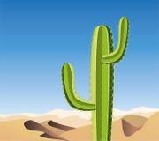 vector cactus in sandy desert Stock Photo