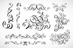 Vector calligraphic design elements: smooth floral Royalty Free Stock Photos