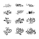 Vector Calligraphic Floral Design Elements Royalty Free Stock Photography