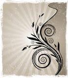 Vector calligraphical uitstekende takken Royalty-vrije Stock Fotografie