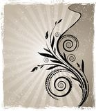 Vector Calligraphical Vintage Branches Royalty Free Stock Photography