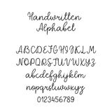 Vector Calligraphy Alphabet. Exclusive Letters. Decorative handwritten brush font for Wedding Monogram, Logo, Invitation vector illustration