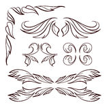 Vector calligraphy elements set. Stock Images