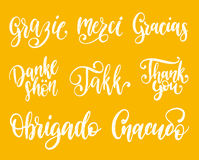 Vector calligraphy set of different languages translation of Thank You.Hand lettering of international thankfulness word. Vector calligraphic set of different Royalty Free Stock Photography