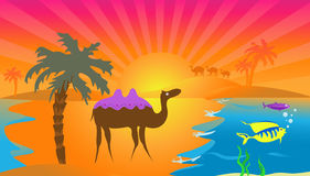 Vector Camel. Vector illustration. The camel against a sunset looks at a caravan. In the sea beautiful fishes float Stock Images