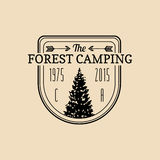 Vector camp logo. Tourism sign with hand drawn spruce illustration. Retro hipster emblem, badge of outdoor adventures. Stock Photo