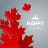 VECTOR Canada Day. Happy Canada Day  Illustration. 1st July celebration poster with maple leaves on gray background Royalty Free Stock Photo