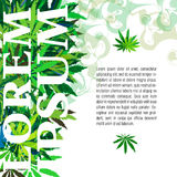 Vector cannabis leafs Royalty Free Stock Photography
