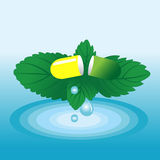 Vector capsule on a green leaf mint. Capsule on a green leaf mint with drops of dew. Vector illustration Royalty Free Stock Photography