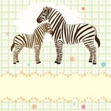Nice vector card with two zebras. Vector card with adult and baby zebras Stock Photos