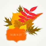 Vector card with autumn decor Royalty Free Stock Photography