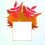 Vector card with autumn decor Stock Image