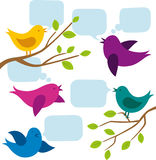 Vector Card With Birds. And speech bubbles Royalty Free Stock Photo