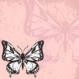 Vector card with butterfly Stock Images