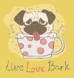 Vector card with cute pug puppy Stock Image