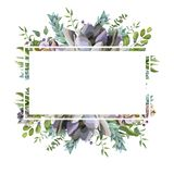Vector card design with Succulent flower plant, berry herb leaf Stock Image